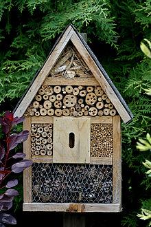 220px-Insektenhaus_7169