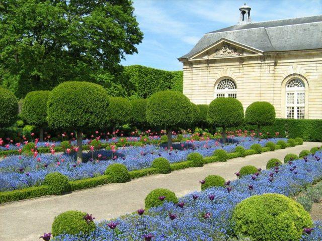 belles-fleurs-jardin-classique