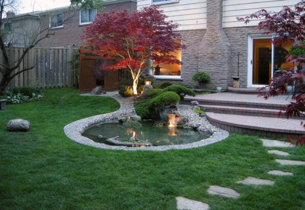 l erable japonais acer japonicum le petit jardinier. Black Bedroom Furniture Sets. Home Design Ideas