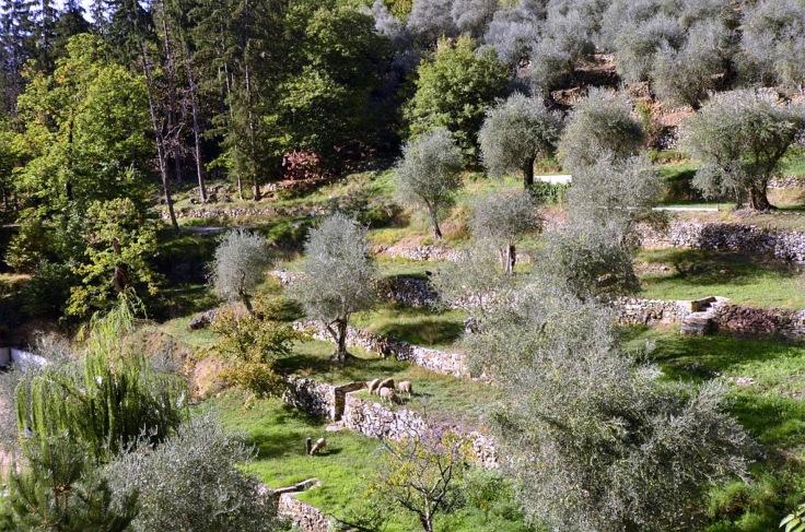 cg06-patrimoine-communes_duranus_restanque