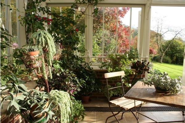 jardin-dhiver-maison-plantes