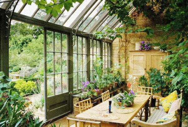 jardin-dhiver-style-rustique-plantes
