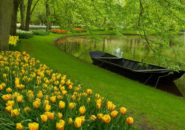 Keukenhof + champs de tulipes 2 (2)