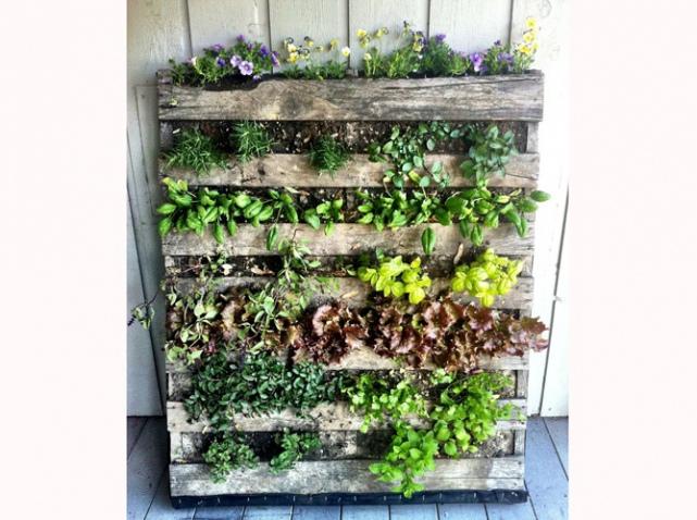 Marion-Siccardi-palette-mur-vegetal_w641h478