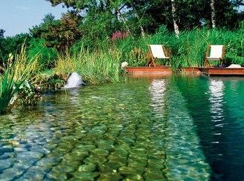 piscine-naturelle-biotech-2302_350x260