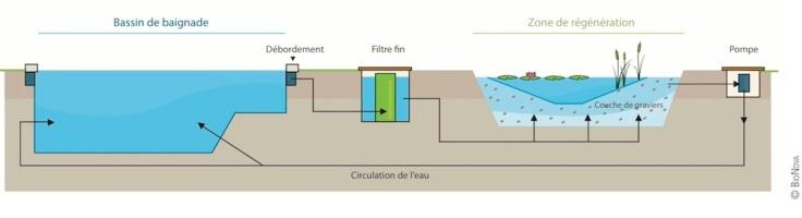 principe-filtration-piscine-biologique-bionova1