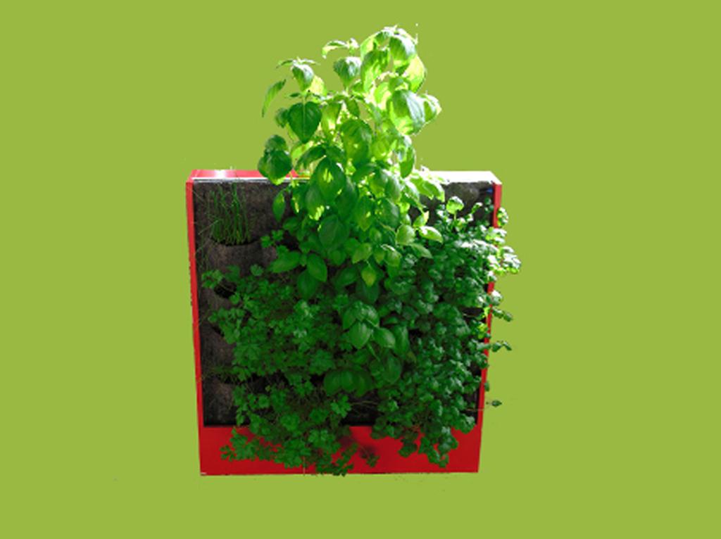 tableau_vegetal_aromatique