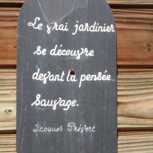 citation-prevert