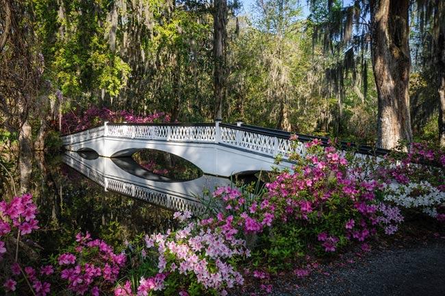 magnolia-plantation-long-bridge