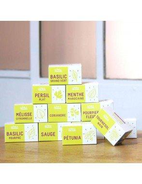 pack-de-12-capsules