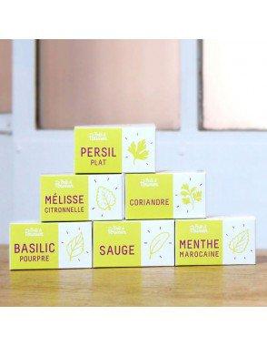 pack-de-6-capsules