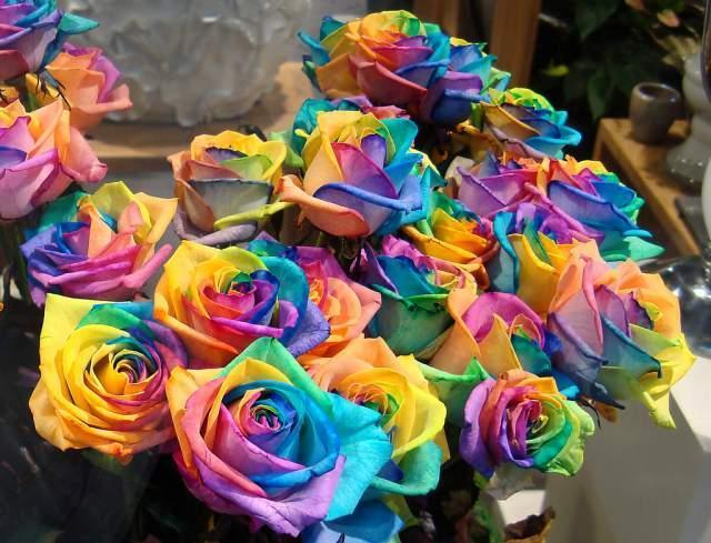 img_comment_colorer_les_fleurs_roses_et_oeillets_9832_orig