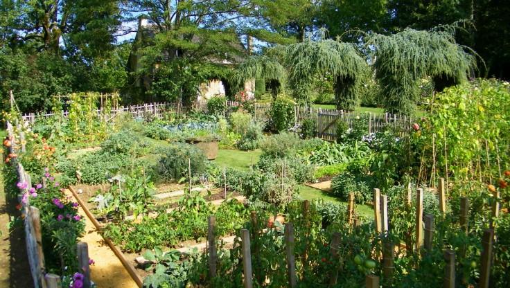 1092-Jardin--Potager--Les-Jardins-Francais-du-Manoir-d-Eyr