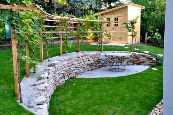 la vigne vitis vinifera le petit jardinier. Black Bedroom Furniture Sets. Home Design Ideas