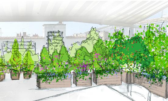herbes-fauves-fleuriste-bordeaux-paysagiste-paysagisme-JUNGLE-terrasse-jardin-aménagement-plantes-verdure-jardinière-arbres-arbuste-création-conception-rooftop-dessin-croquis