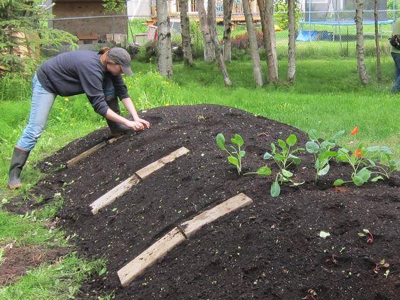 la permaculture au jardin potager le petit jardinier. Black Bedroom Furniture Sets. Home Design Ideas