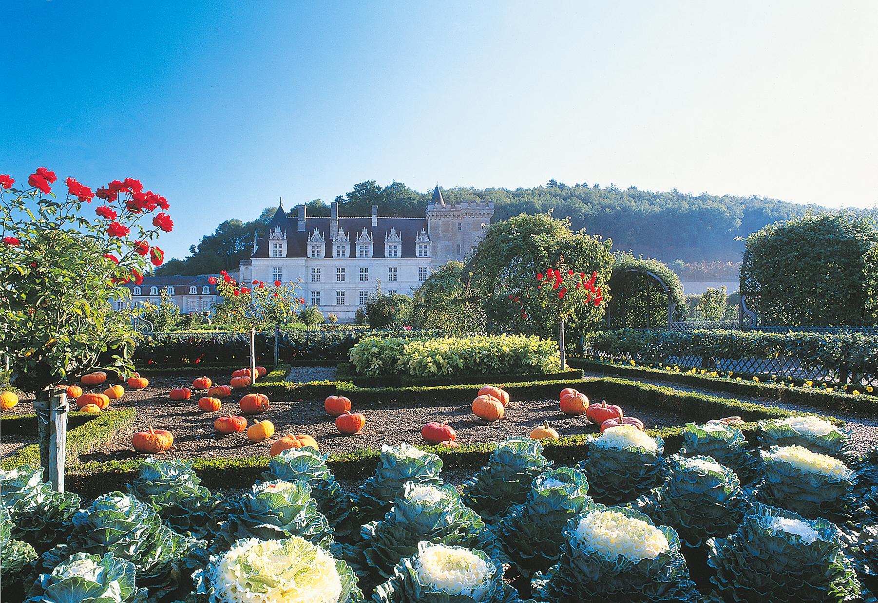 chateau_jardins_villandry_potager_jbleroux_hd
