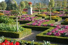 Jardin-du-chateau-de-Villandry-37