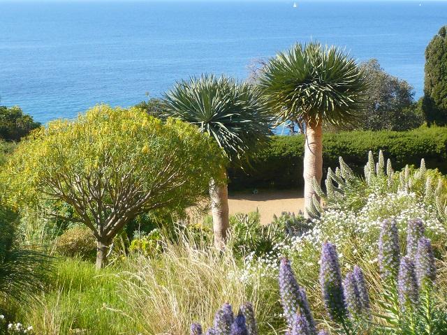 domaine-du-rayol-jardin-des-mediterranees